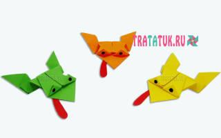 Оригами из бумаги для детей: прыгающая лягушка и машинка для начинающих,