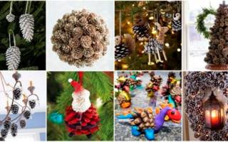 Как сделать поделку бабочку из разных материалов: из шишек, из шелка и из шаров