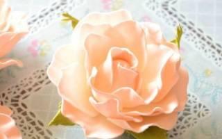 Бутон розы из фоамирана: мастер класс с фото и видео