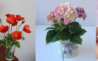 Полимерная глина для начинающих: подробные мастер классы с пошаговыми фото