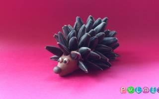 Лепка из пластилина: видео уроки и фото поэтапно на примере лепки животных