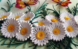 Белые цветы своими руками: делаем в технике квиллинг из бисера и из бумаги